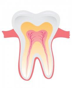 comment les dentistes blanchissent-ils les dents