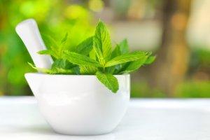 l'huile essentielle de menthe