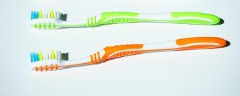 brosses à dents
