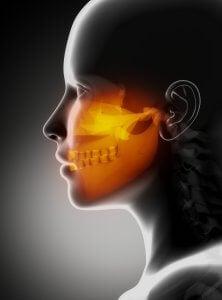vue de profil d'un visage avec mandibule